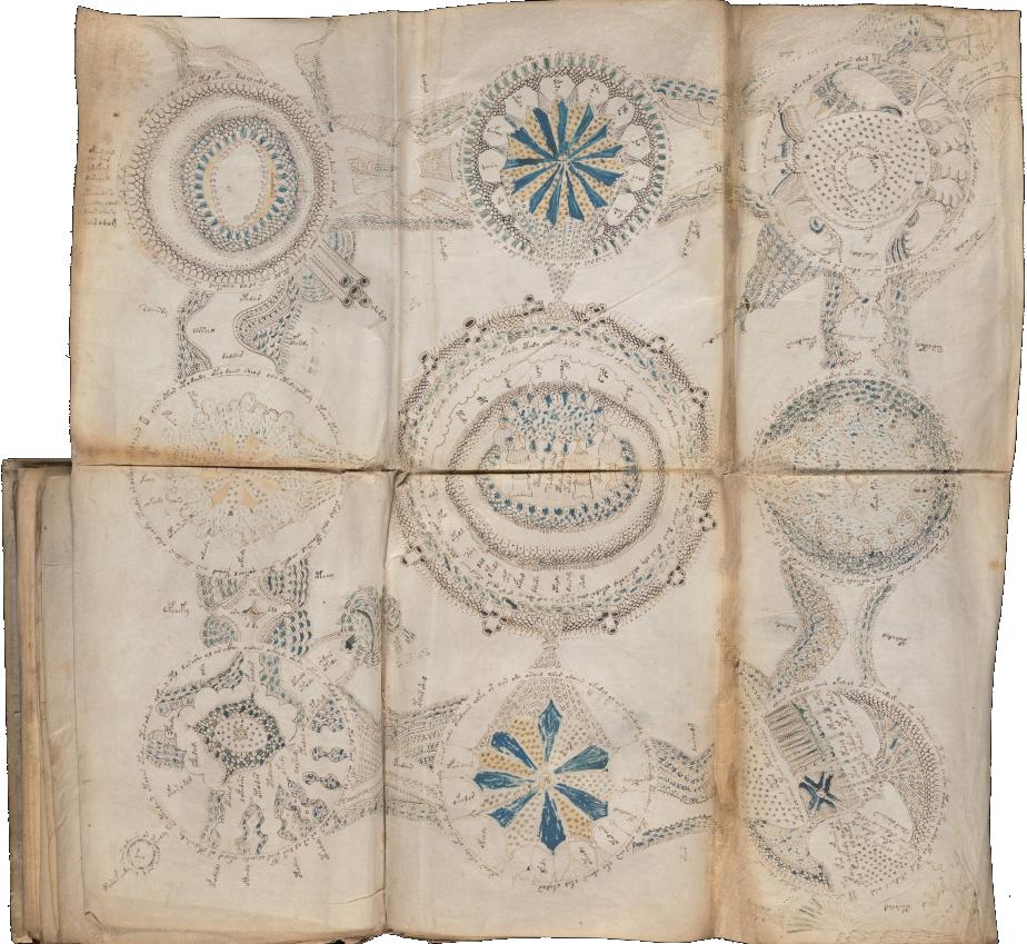 Карта из манускрипта Войнича